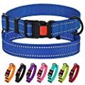 """CollarDirect Reflective Dog Collar,SafetyNylon Collars for Dogs with Buckle,Outdoor Adjustable Puppy Collar Small Medium Large (Neck Fit 10""""-13"""", Blue)"""