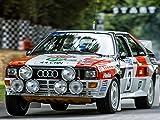Rallyesport 1983