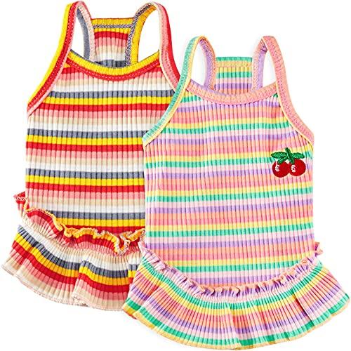 2 Faldas de Mascotas Vestido de Perro Faldas de Rayas Colores Vestido con Estampado de Cerezas Falda Tutú de Princesa Ropa de Primavera Verano de Arcoíris Chaleco Perrito (Extragrande)