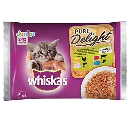 Whiskas Pure Delight - Gelatina surtida Junior, multisabor, 4 x 85 g, Comida para Gatos de 0 a 12 Meses, 13 Paquetes (52 bolsitas en Total) 🔥