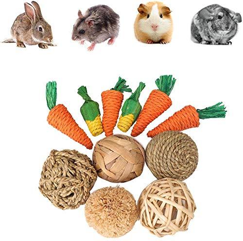 Generic Lot de 11 jouets pour petits animaux à...