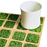 芝生コースター 原木コースター 癒やしの芝生 ウェディング 誕生日プレゼント(4本入りセット)