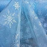 Herren Unterhose Frozen Disney Gardine Elsa silberfarbener