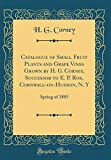 Catalogue of Small Fruit Plants and Grape Vines Grown by H. G. Corney, Successor to E. P. Roe, Cornwall-on-Hudson, N. Y: Spring of 1885 (Classic Reprint)