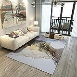 Xiaosua alfombras pequeñas Gris Alfombra Sala de Estar Malla Gris Modelo Abstracto Alfombra Durable Lavable Decoracion de Salones 100X160CM Alfombra Silla Ruedas 3ft 3.4''X5ft 3''