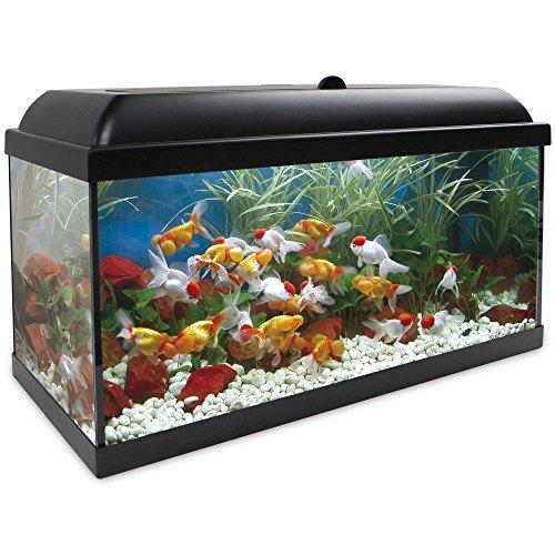 Kit acuario Aqualed pro negro 100