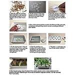 Pots de pépinière avec Trous, Propagateur Auto-arrosant à 11 cellules, Systèmes hydroponiques de Sites de Plantes statiques, Pot de pépinière Plantes de Culture sans Sol #3