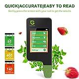 Greentest Instant-Lesegerät für frisches Fleisch, Obst, Gemüse, Nitrat-Tester und Messgerät für Lebensmittel (schwarz)