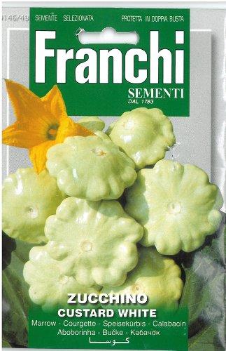 Franchi Samen creme marrow- Zucchino creme wei