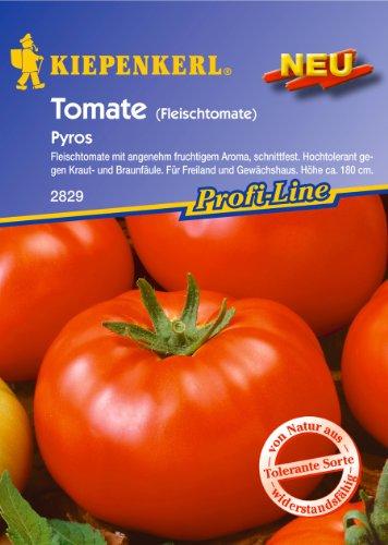 Tomate, Pyros (Fleischtomate)