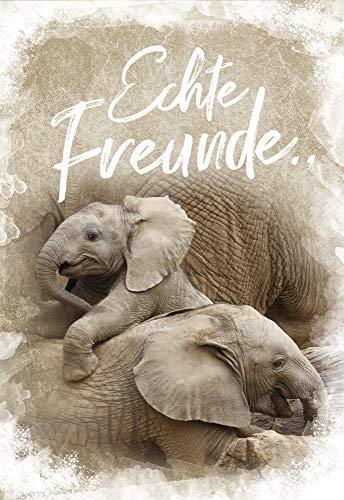 Soundkarten - Musikkarten - Geburtstagskarte - Geburtstag Karte - 17,0 x 11,5 cm - inkl. Umschlag - Motiv: Elefanten