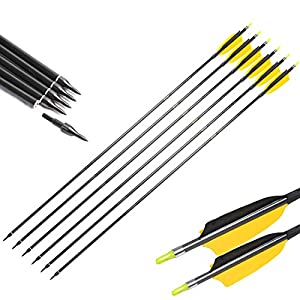 Linkboy Archery Carbon Arrows Spine 300 400 500 600 30 32inch for Compound Recurve Traditional Bow Longbow Hunting Practice Pack of 12