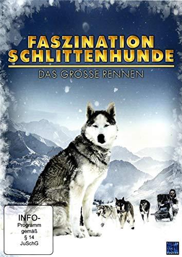 Faszination Schlittenhunde - Das Grosse Rennen