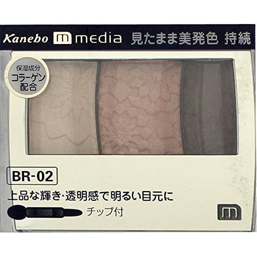 クール問い合わせ湿気の多い【カネボウ】 メディア グラデカラーアイシャドウ BR-02