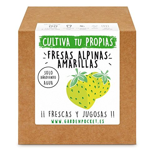 Garden Pocket - Kit Cultivo Fresas Amarillas