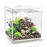 biOrb Cube 30 Aquarium with LED - 8 Gallon, White