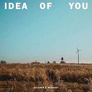 Idea of You