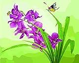 JASIOHCDSPintura Familiar de Bricolaje por números para Flores de Mariposas de Nivel Principiante Junior senior-1216 Pulgadas (sin Marco) Pintura al óleo Pintada a Mano