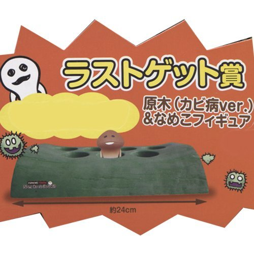 Everyone of lottery Touch detective Nameko coltivazione kit last Get Award wood (mold disease ver.) & Nameko figure separately
