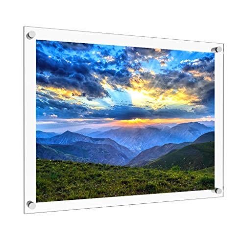 Vale Arbor 16 x 20 Acrylic Picture Frame with Brushed Stainless Steel Metal Standoffs