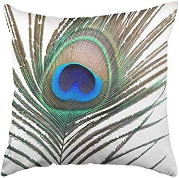 FJPT Peacock Feather Throw Pillow Cover Indoor Creative Decorations for Sofa Bed Square Pillowcase product image