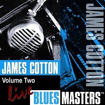 Live Blues Masters, Vol. 2