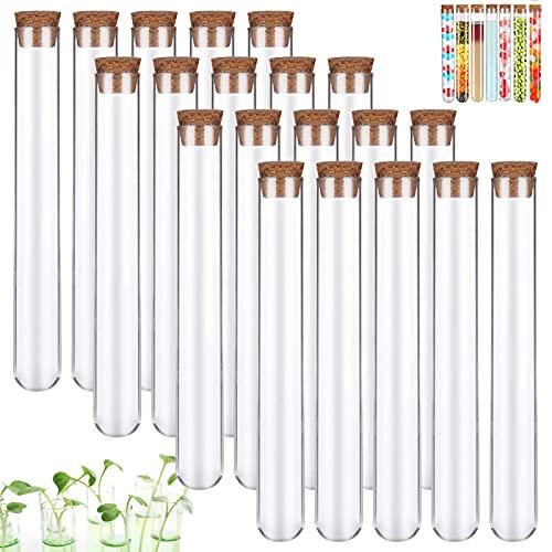 Xinmeng Lot de 20 tubes à essai en plastique transparent - Tubes à essai avec bouchon en liège pour fleurs, cadeaux d'invités, mariages, bonbons (16 mm x 150 mm)
