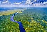 DesFoli Brasilien Fluss Amazonas Dschungel Poster