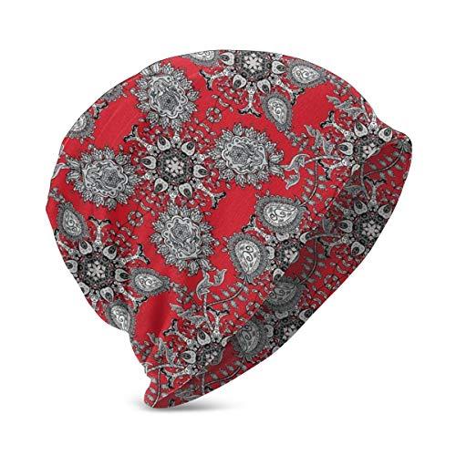 Beanie Knit Cap for Boy Girl, Doodle Mandala Flower Ivy Swirls Classic Paisley Ethnic Design Image, SoftWarmWinterhat