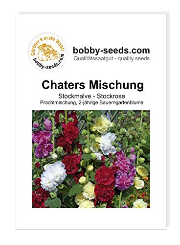 Chaters Mischung Stockmalve von Bobby-Seeds Portion
