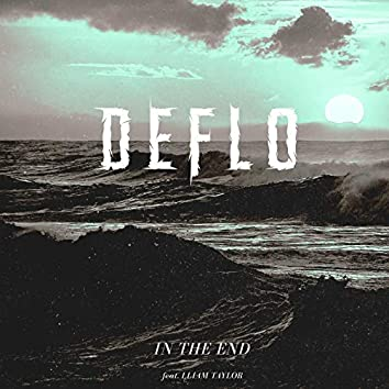 In the End (feat. Lliam Taylor)