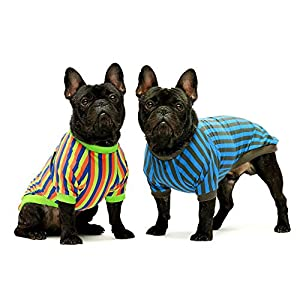 Fitwarm 2-Pack 100% Cotton Striped Dog Shirt for Pet Clothes Puppy T-Shirts Cat Tee Breathable Strechy Blue Green Medium