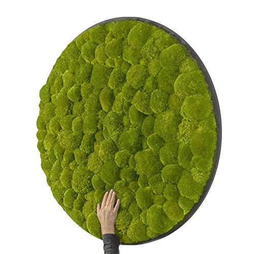 MOOS MOOS MANUFAKTUR Moosbild - Rundes 3D Wandbild mit Kugelmoos in Grün - Durchmesser Ø 118 cm - auf Holzfaserplatte Anthrazit