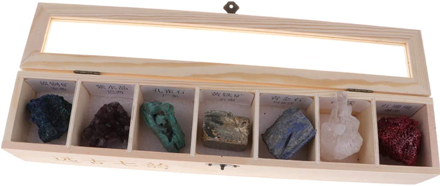 MagiDeal Rock & Mineral Collection  Geology Specimens Earth Science Educational  Wooden Box of 7 Pieces Natural Quartz Amethyst Azurite Coral
