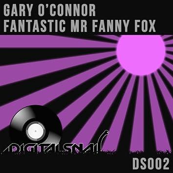 Fantastic Mr Fanny Fox