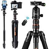 TACKLIFE 70 Inch Tripod with Monopod, Max Load Capacity of 18 Lbs, Aluminum Travel Tripod with 360 ° Ball Head & Quick Release Mount, Bluetooth Remote, Suitable for Smartphone and DSLR Camera -MLT05