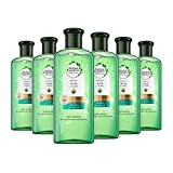 Herbal Essences PURE:renew Repair & Smooth, champú sin sulfatos con aloe + cáñamo, 6 unidades (6 x 260 g)