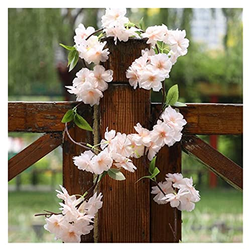 lliang Künstliche Blumen 6 stücke Gefälschte Kirsche Blossom Blume Zweig Begonie Sakura Baum Stem für Veranstaltung Hochzeit Baum Deco Künstliche Dekorative Blumen (Farbe : 180cm Champagne)