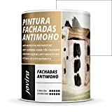 PINTURA FACHADAS ANTIMOHO, Repelente al agua, impermeable y antifisuras. (750ML, BLANCO)