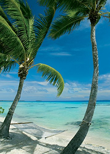 Poster 50 x 70 cm hangmat op het strand/Hammock Between Two Palm Trees Man Beach Anonym