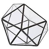 LOVIVER Estilo Vintage Vidrio Claro Geométrico Terrario Caja Plantas De Aire Contenedor Planta Maceta Decoración De La Mesa - Negro, 12 x 12 x 12 cm