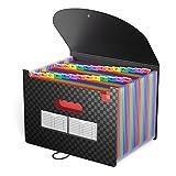 Ampliación de la carpeta de archivos, Topteam A4 Accordion Wallet carpeta con 26 bolsillos organizador de archivos documentos portátiles para Office / Negocios / Escuela