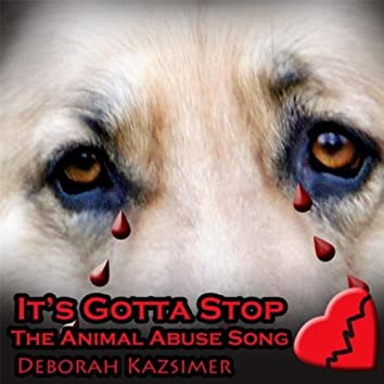 It's Gotta Stop (The Animal Abuse Song)