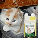 Produit Nettoyant et Eliminateur d'odeur Bio pour Chats Ecosharkz Animal - Spray désodorisant anti urine pour intérieurs avec chat et litière - Concentré de 500ml - jusqu'à 25L de solution nettoyante #3