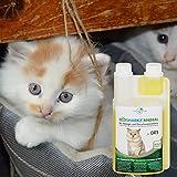 Geruchsneutralisierer Spray für Katzen – natürlicher Katzenurin Entferner – gegen Katzenklo Geruch - 8