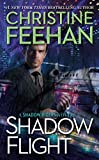 Shadow Flight (A Shadow Riders Novel)