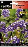 Semillas de Flores - Statice Sinuata Azul - Batlle
