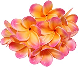 Xilyya 10PCS Natural Real Touch Artificial Not Silk Plumeria Flowers Head with Stem for DIY Cake Decoration and Wedding Bouquets (Apricot)