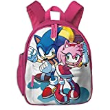 Insulated Toddler Backpack, Sonic And Amy Picnic Backpack With Padded Shoulder Straps, Strong Large Preschool Bag For Boys Girls