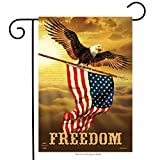Briarwood Lane Freedom Patriotic Garden Flag Bald Eagle USA 12.5' x 18'